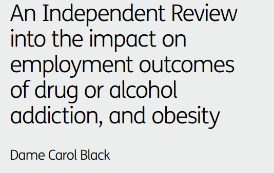 The Work Company response to the Dame Carol Black review